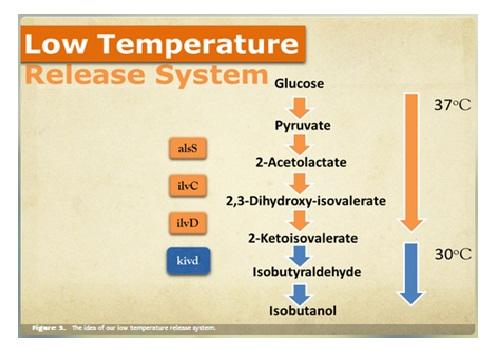 Gambar 2 Mekanisme Low Temperature Release System