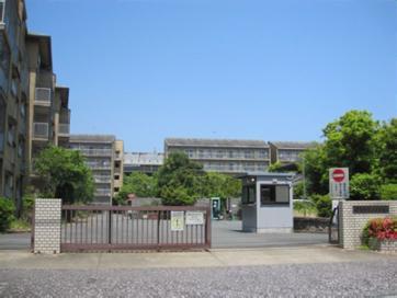 kashiihama1